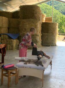 Feldenkrais at the horse riding barn